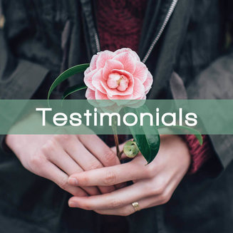 Testimonials: The Modern Woman's Guide To The Bible